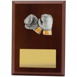 Plaque Peak Boxing 175mm