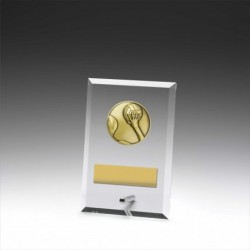 Glass Plaque Water Polo 150mm